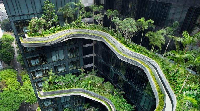 สวนลอยฟ้าในโรงแรมหรู PARKROYAL Hotel สิงคโปร์