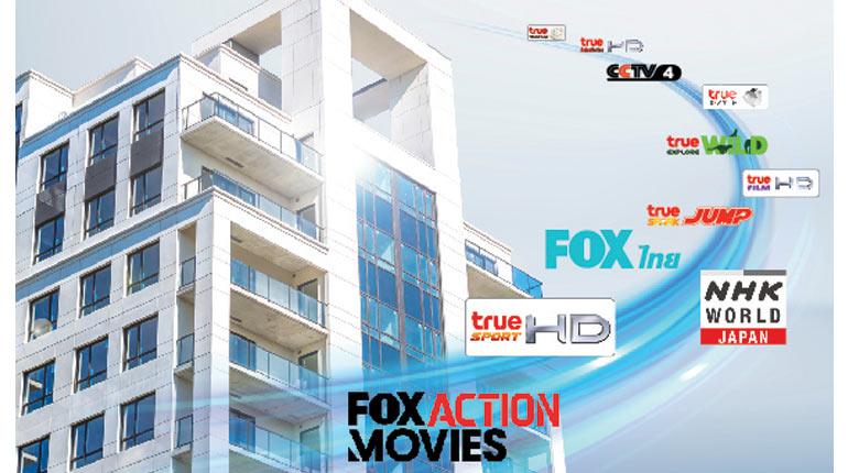 True Hotel Plus แพ็กเกจสำหรับโรงแรมและอพาร์ทเม้นท์